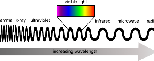 A schematic showing the position of visible waelengths within the electromagnetic spectrum